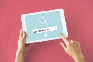 Webコンサルテインング